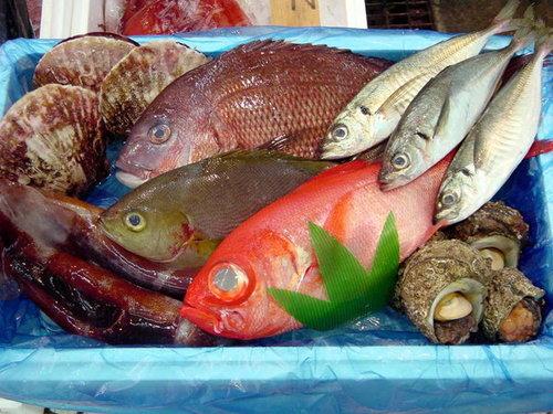鮮魚おまかせトクトクセット
